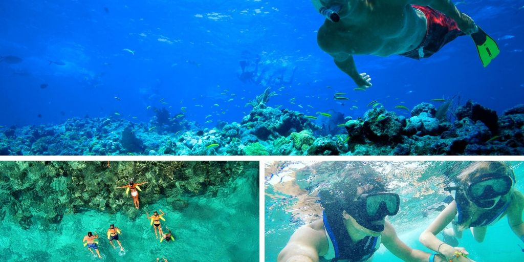 Snorkeling In Punta Cana